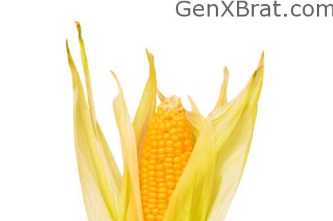 Monsanto Corn cob