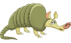 Animated Armadillo - Why do they always land on their backs?