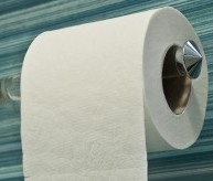 Single Ply Toilet Paper Sucks